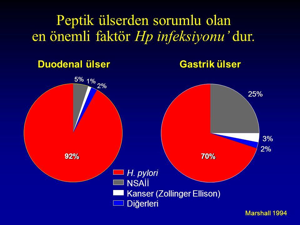 Peptik ülserden sorumlu olan en önemli faktör Hp infeksiyonu' dur.