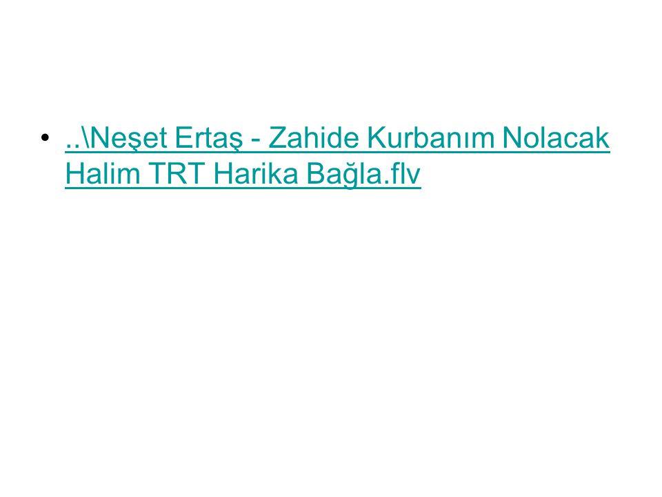 ..\Neşet Ertaş - Zahide Kurbanım Nolacak Halim TRT Harika Bağla.flv