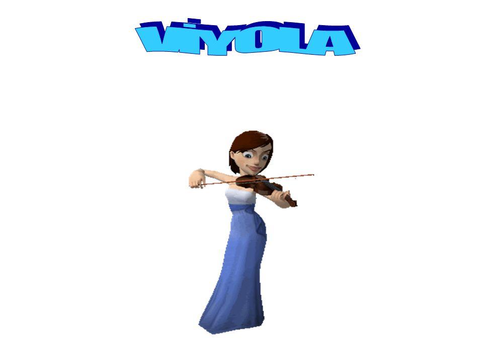 VİYOLA