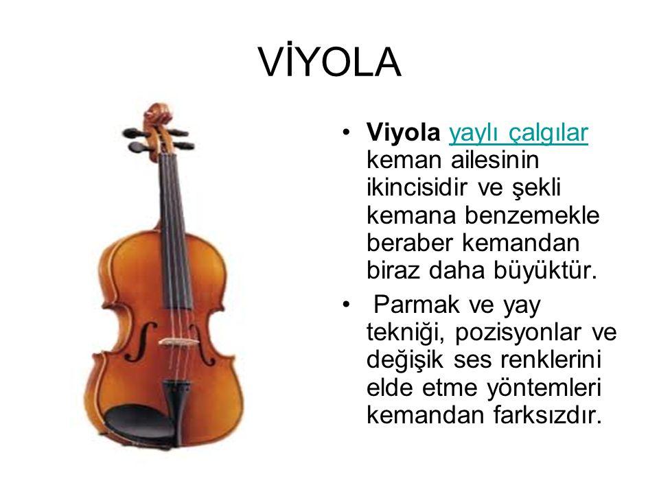 VİYOLA Viyola yaylı çalgılar keman ailesinin ikincisidir ve şekli kemana benzemekle beraber kemandan biraz daha büyüktür.