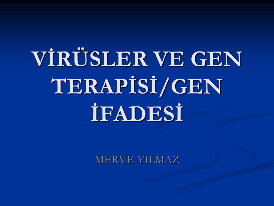 VİRÜSLER VE GEN TERAPİSİ/GEN İFADESİ
