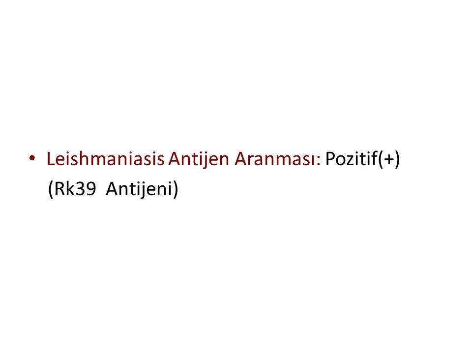 Leishmaniasis Antijen Aranması: Pozitif(+)
