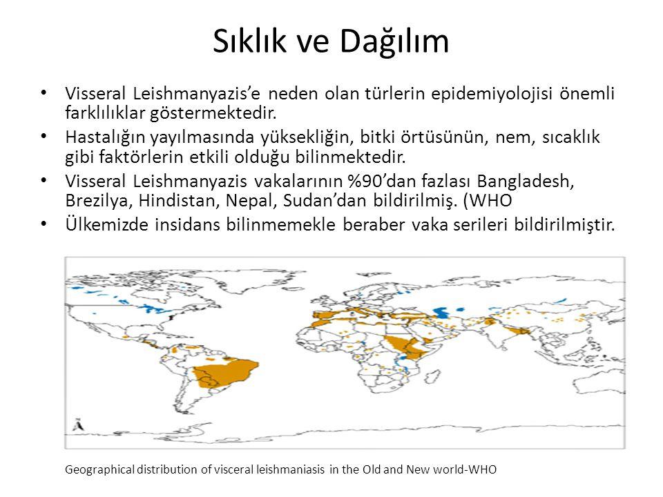 Sıklık ve Dağılım Visseral Leishmanyazis'e neden olan türlerin epidemiyolojisi önemli farklılıklar göstermektedir.
