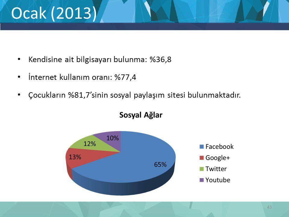 Ocak (2013) Kendisine ait bilgisayarı bulunma: %36,8