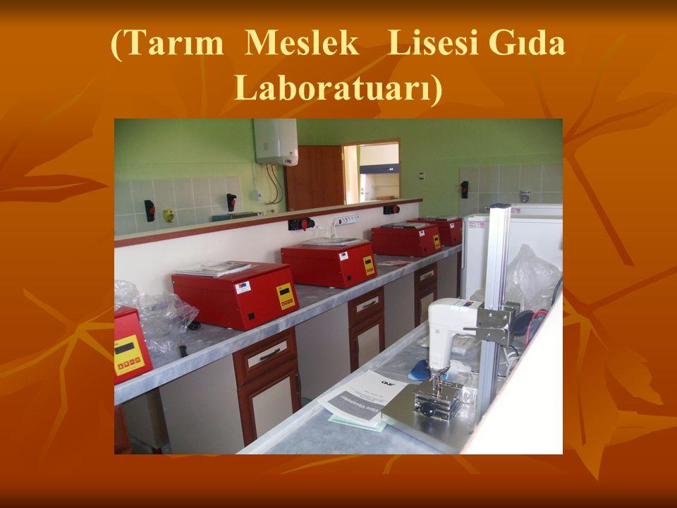 (Tarım Meslek Lisesi Gıda Laboratuarı)