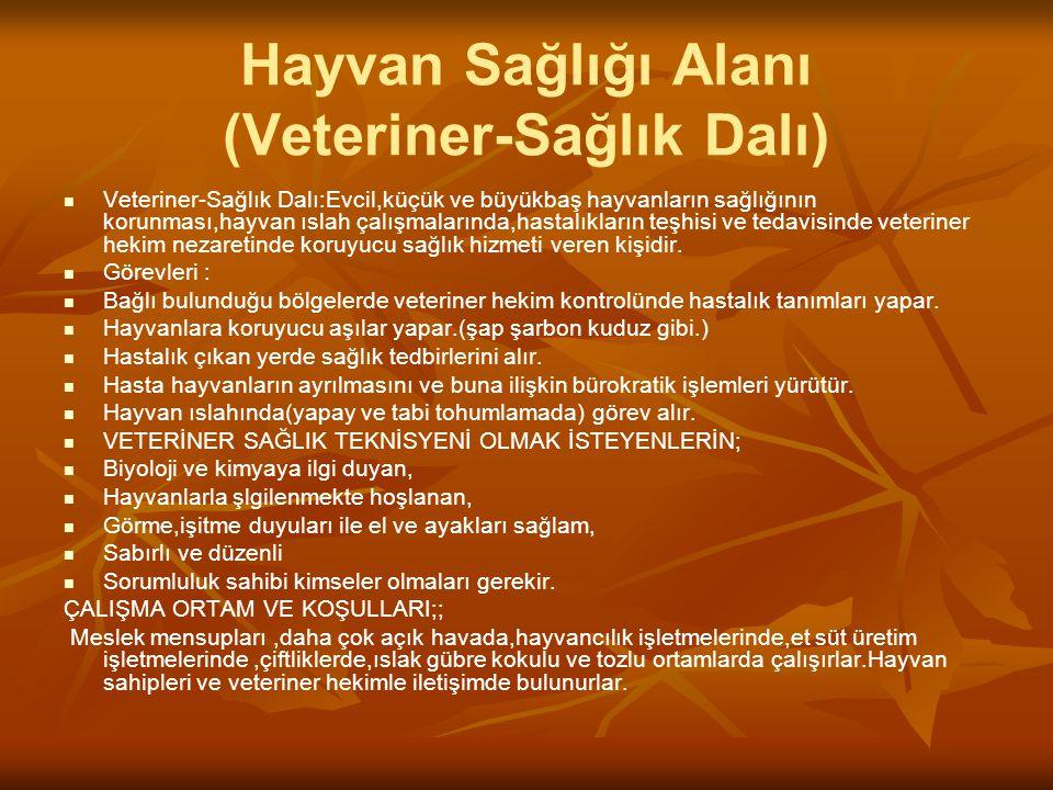 Hayvan Sağlığı Alanı (Veteriner-Sağlık Dalı)