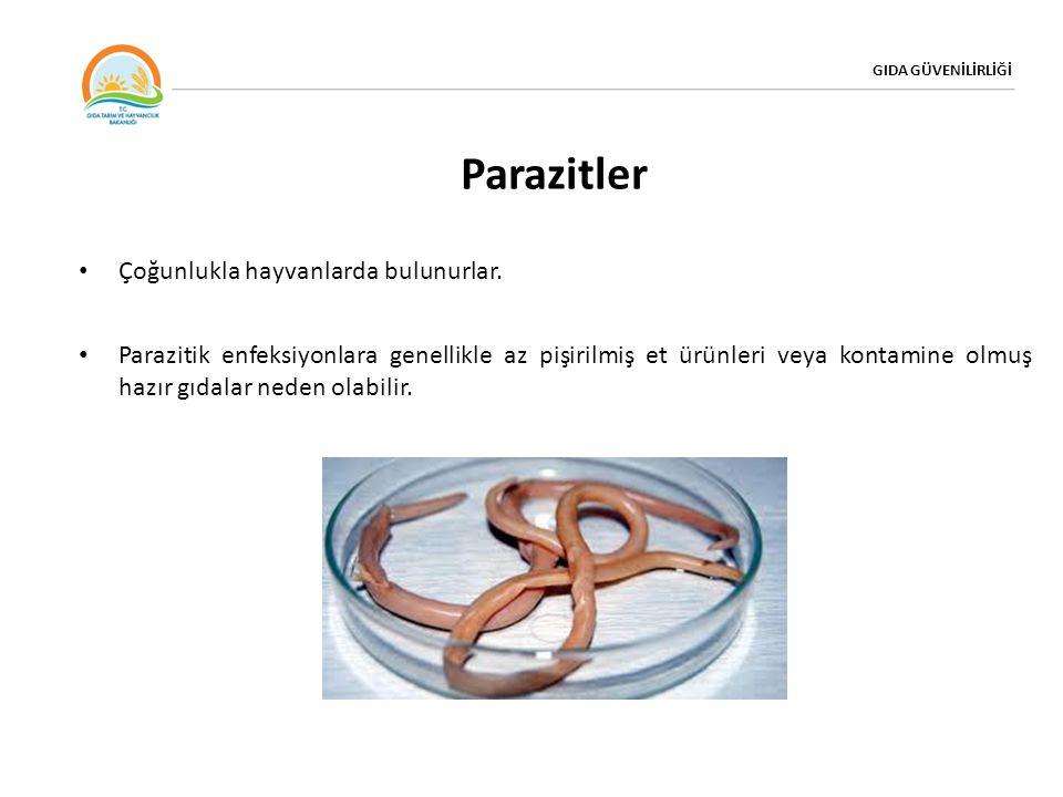 Parazitler Çoğunlukla hayvanlarda bulunurlar.