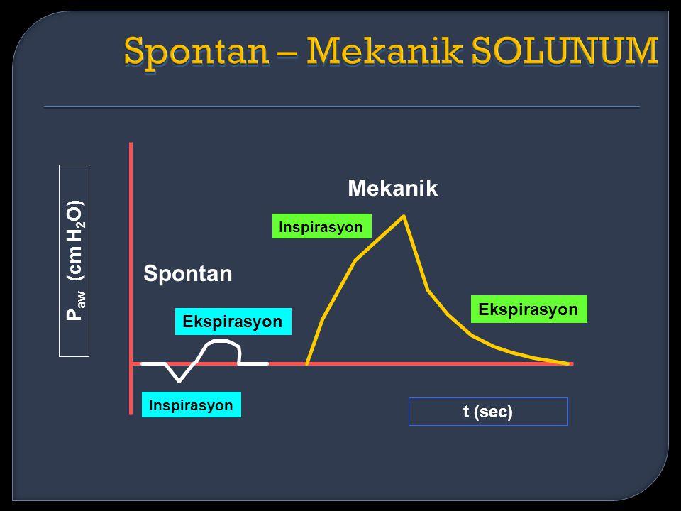Spontan – Mekanik SOLUNUM