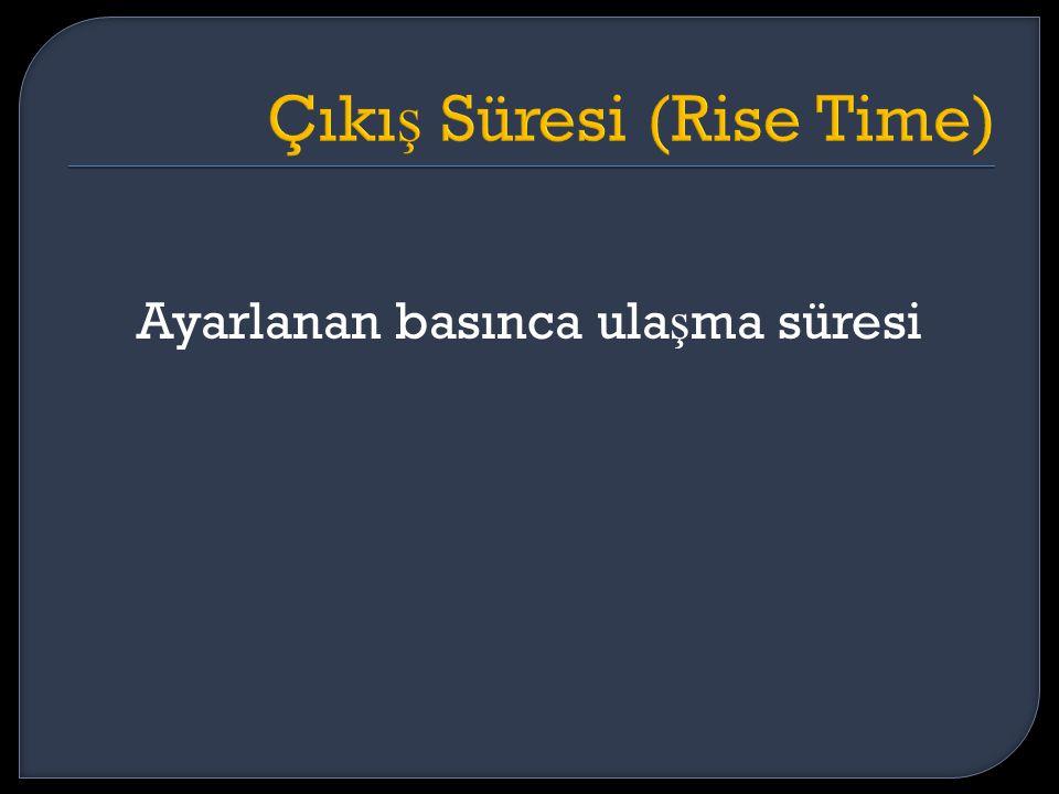 Çıkış Süresi (Rise Time)