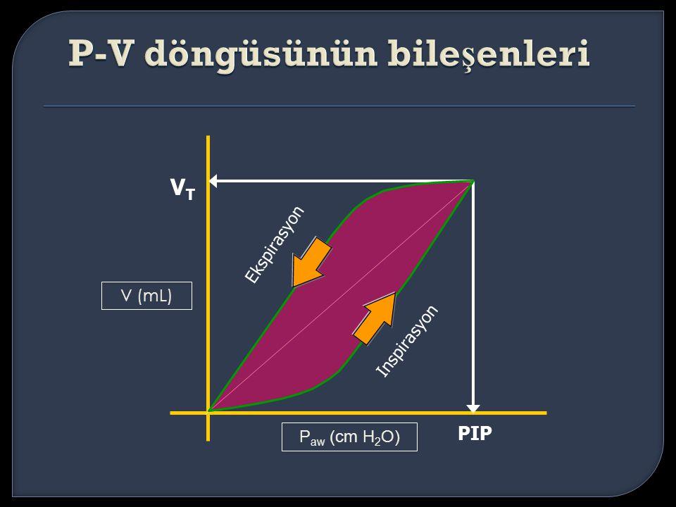 P-V döngüsünün bileşenleri