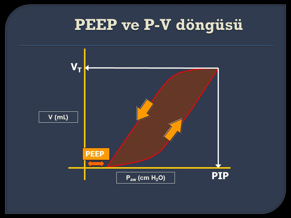 PEEP ve P-V döngüsü VT PIP V (mL) PEEP Paw (cm H2O)
