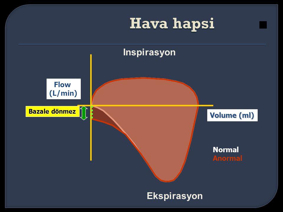 Hava hapsi Inspirasyon Ekspirasyon Flow (L/min) Volume (ml) Normal
