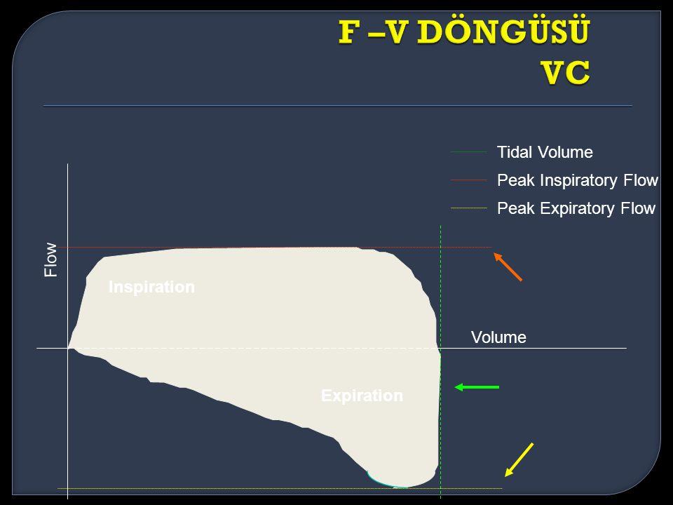 F –V DÖNGÜSÜ VC Tidal Volume Peak Inspiratory Flow