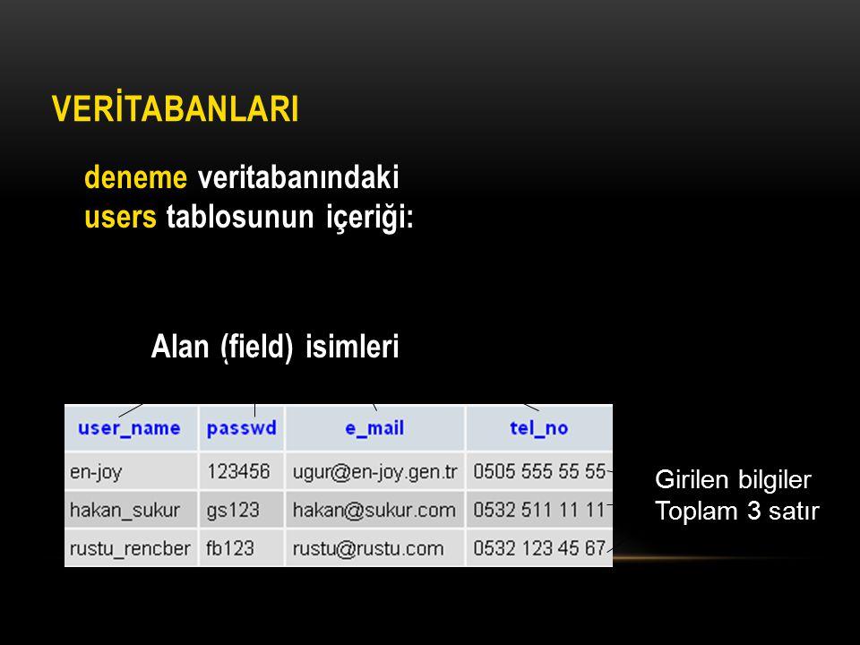 Alan (field) isimleri VERİTABANLARI