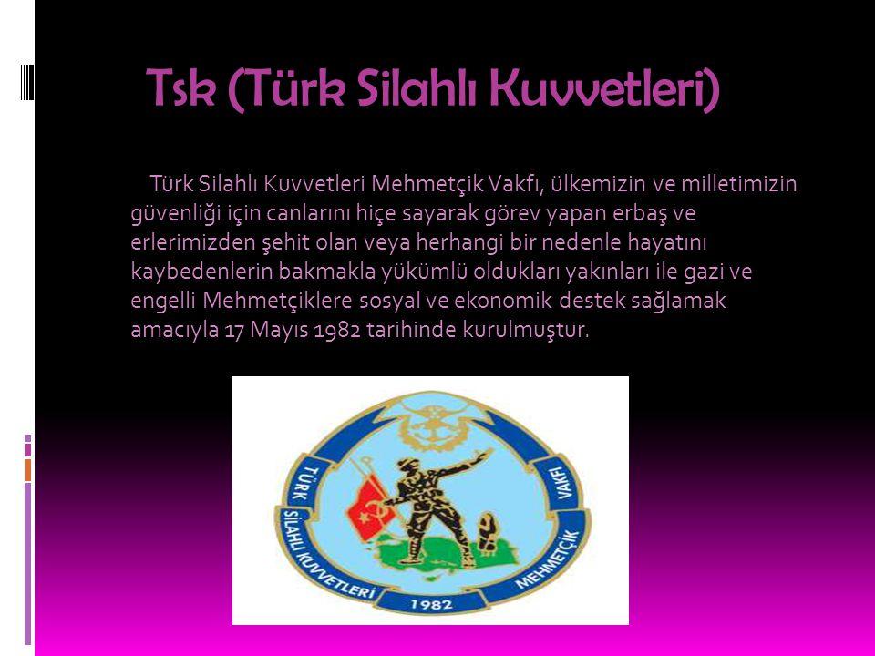 Tsk (Türk Silahlı Kuvvetleri)