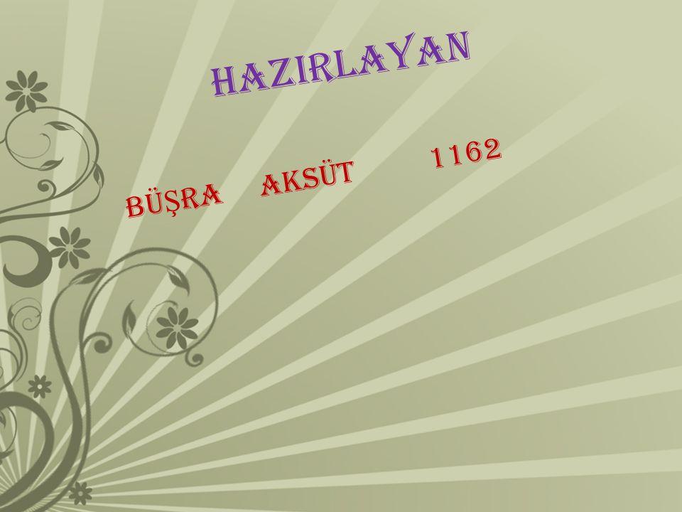 HAZIRLAYAN BÜŞRA AKSÜT 1162