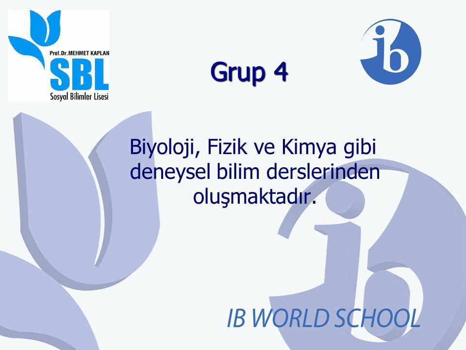Grup 4 Biyoloji, Fizik ve Kimya gibi deneysel bilim derslerinden oluşmaktadır.