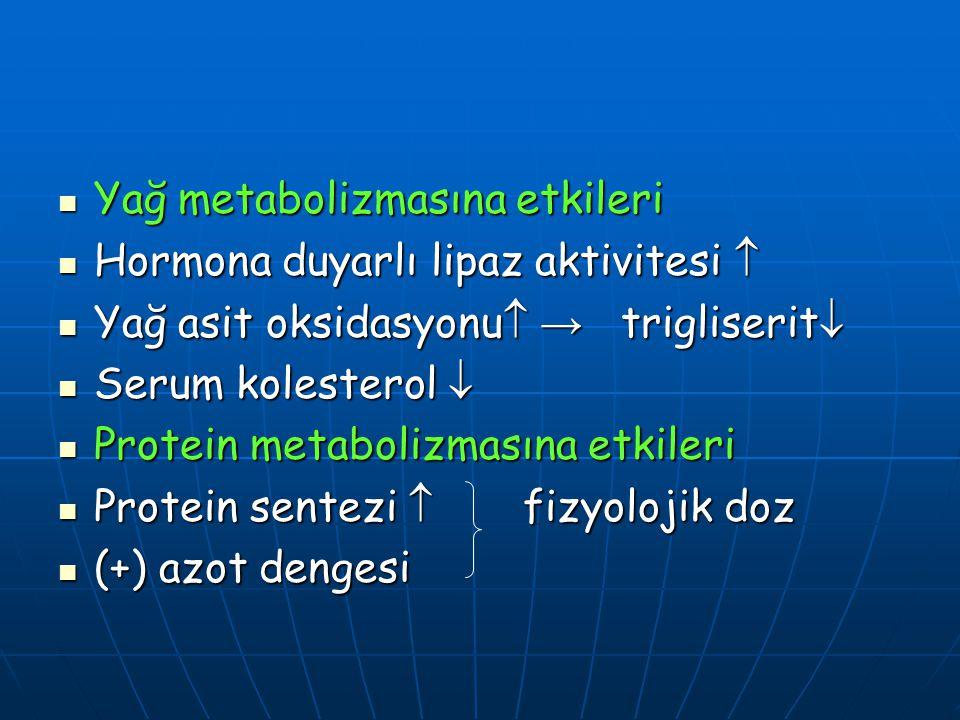 Yağ metabolizmasına etkileri