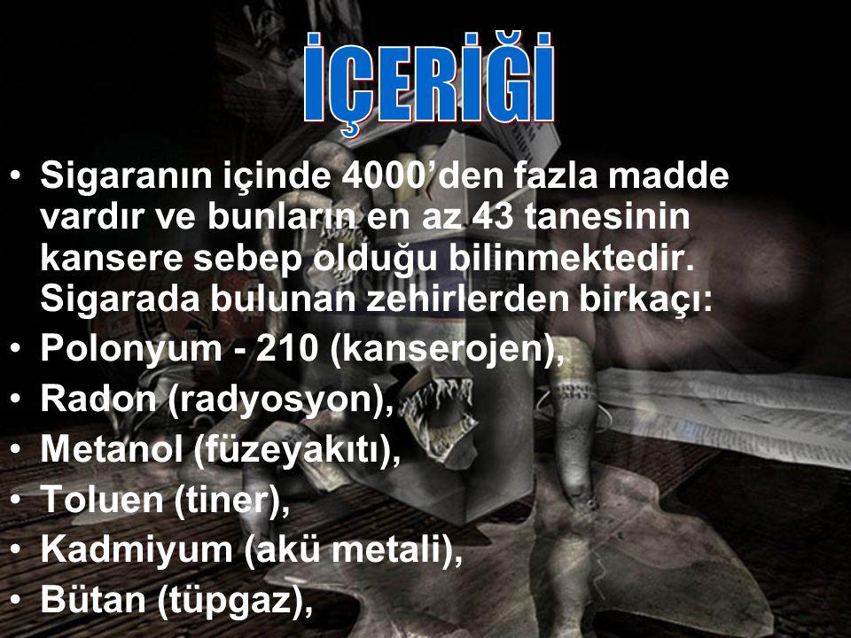 İÇERİĞİ