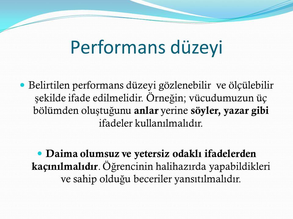 Performans düzeyi