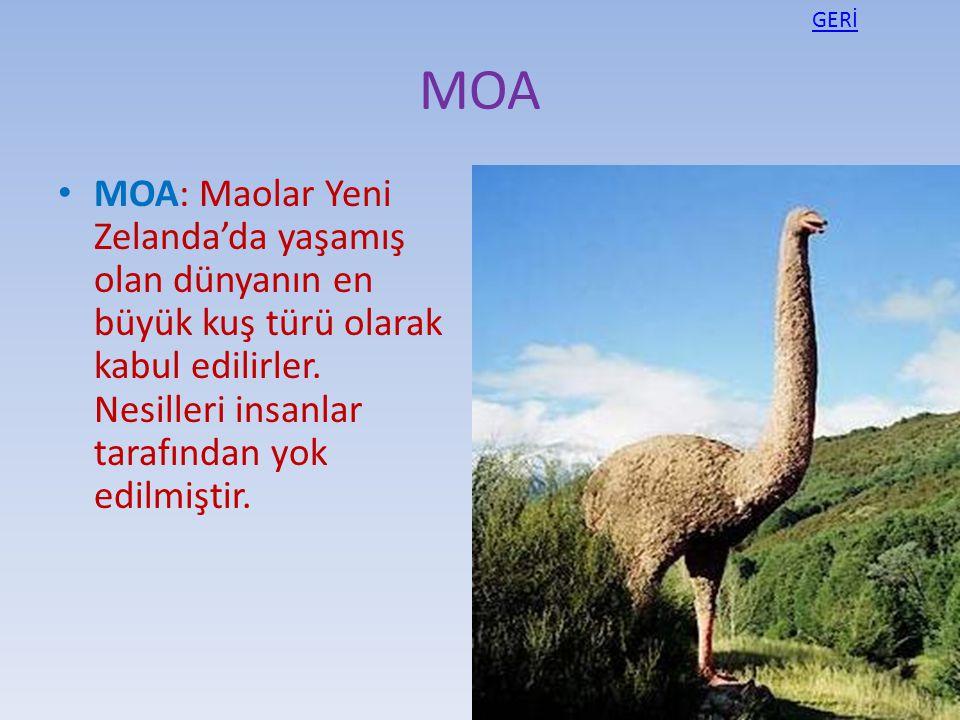 GERİ MOA.