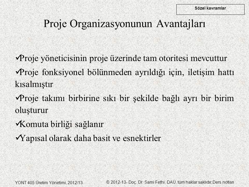 Proje Organizasyonunun Avantajları