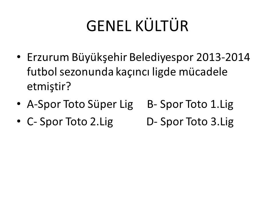 GENEL KÜLTÜR Erzurum Büyükşehir Belediyespor 2013-2014 futbol sezonunda kaçıncı ligde mücadele etmiştir