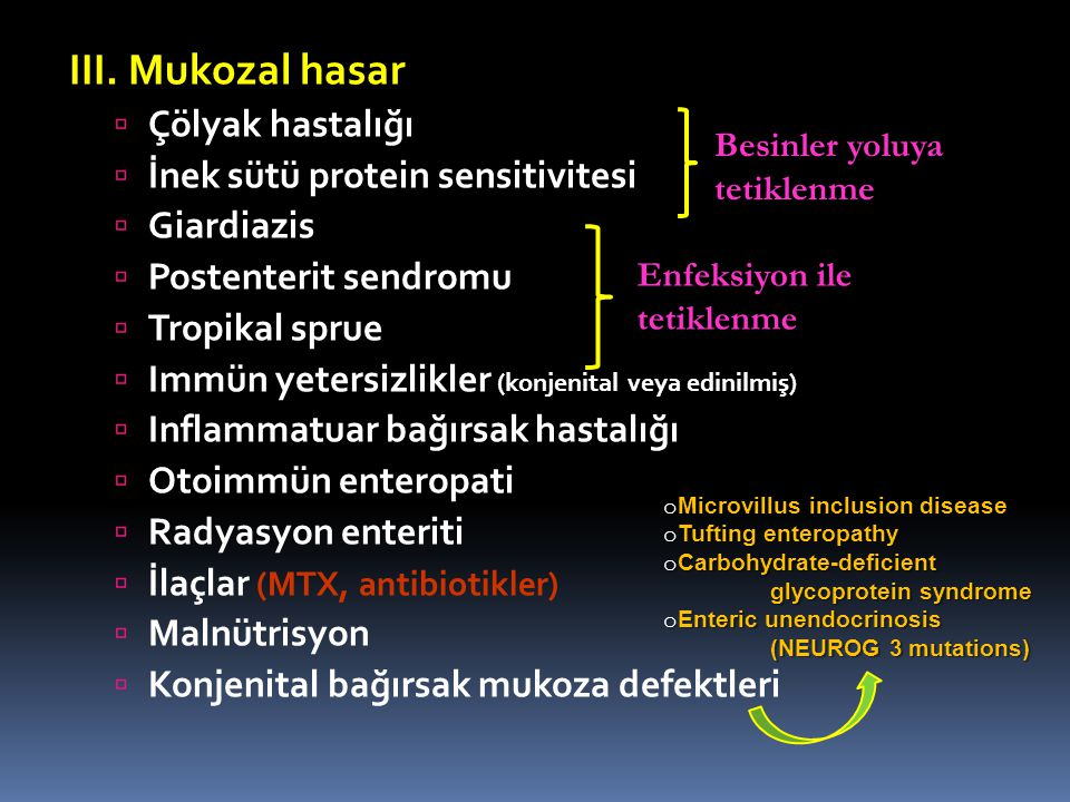 III. Mukozal hasar Çölyak hastalığı İnek sütü protein sensitivitesi