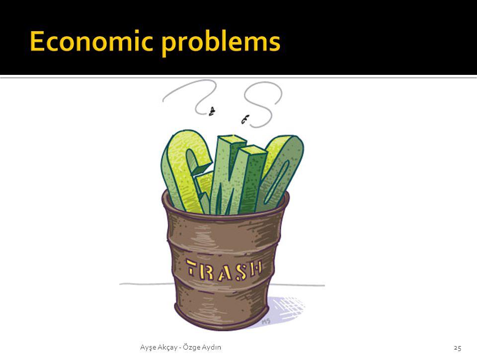 Economic problems Ayşe Akçay - Özge Aydın