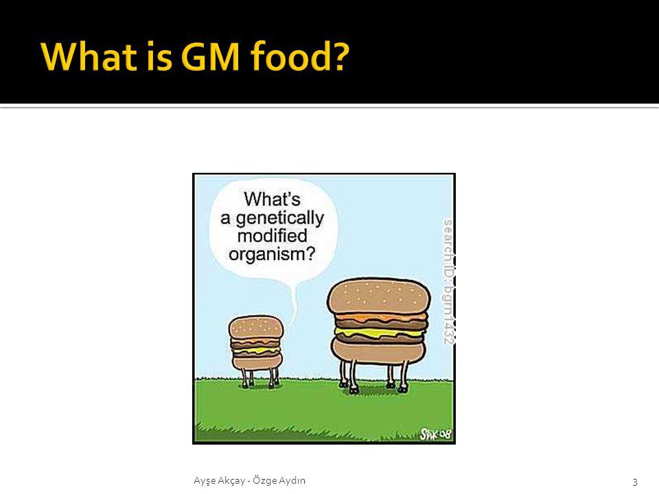 What is GM food ayşe Ayşe Akçay - Özge Aydın