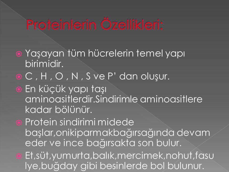 Proteinlerin Özellikleri:
