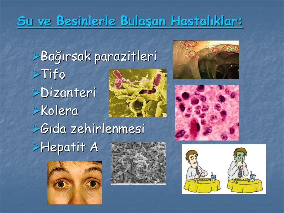 Su ve Besinlerle Bulaşan Hastalıklar: