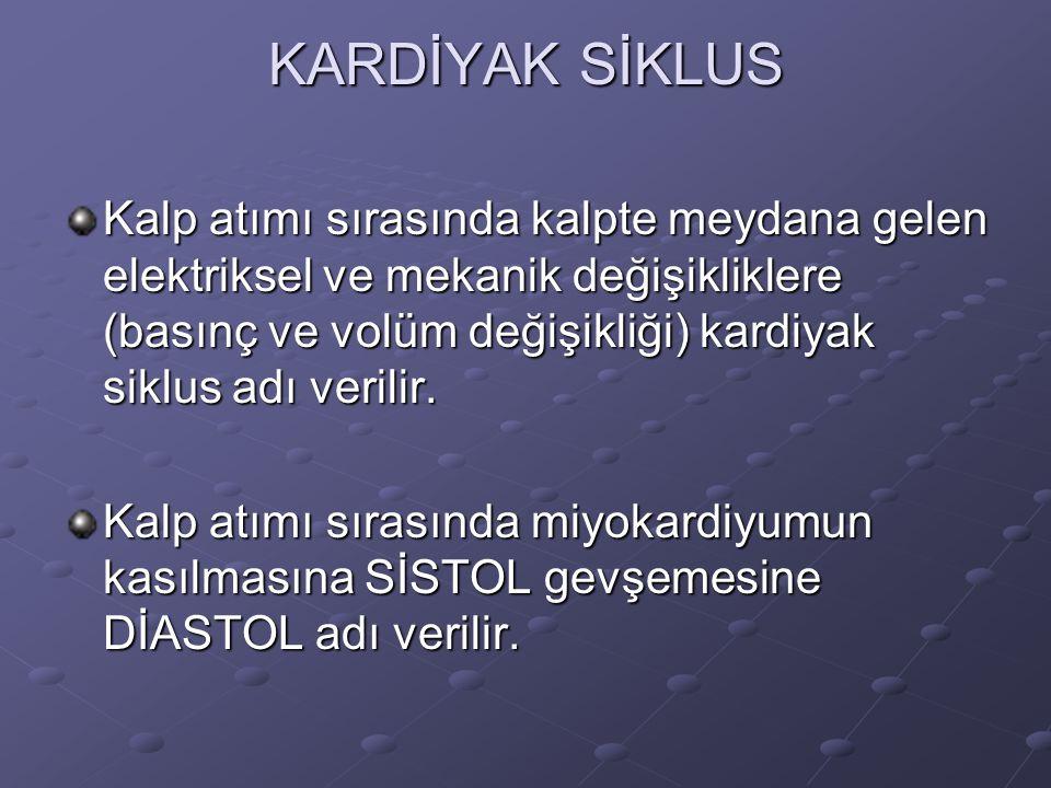 KARDİYAK SİKLUS