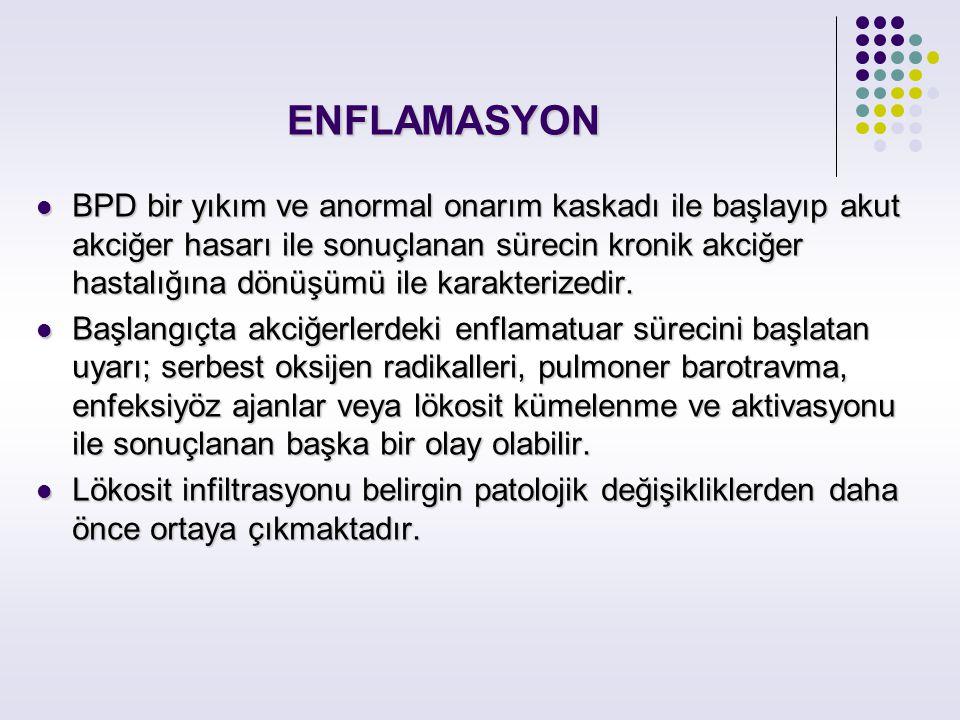 ENFLAMASYON