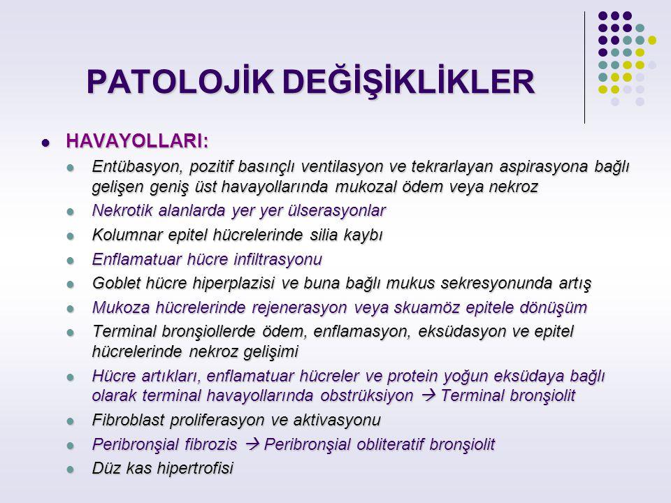 PATOLOJİK DEĞİŞİKLİKLER
