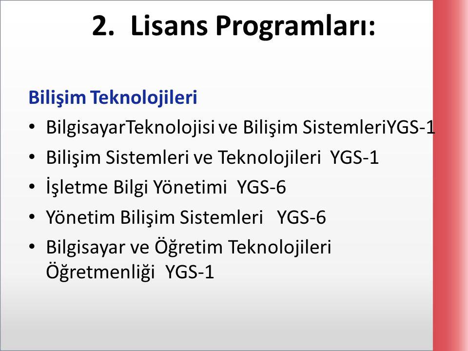 2. Lisans Programları: Bilişim Teknolojileri