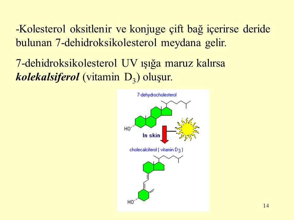 -Kolesterol oksitlenir ve konjuge çift bağ içerirse deride bulunan 7-dehidroksikolesterol meydana gelir.