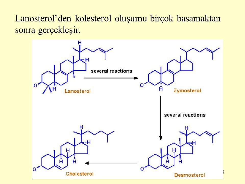 Lanosterol'den kolesterol oluşumu birçok basamaktan sonra gerçekleşir.