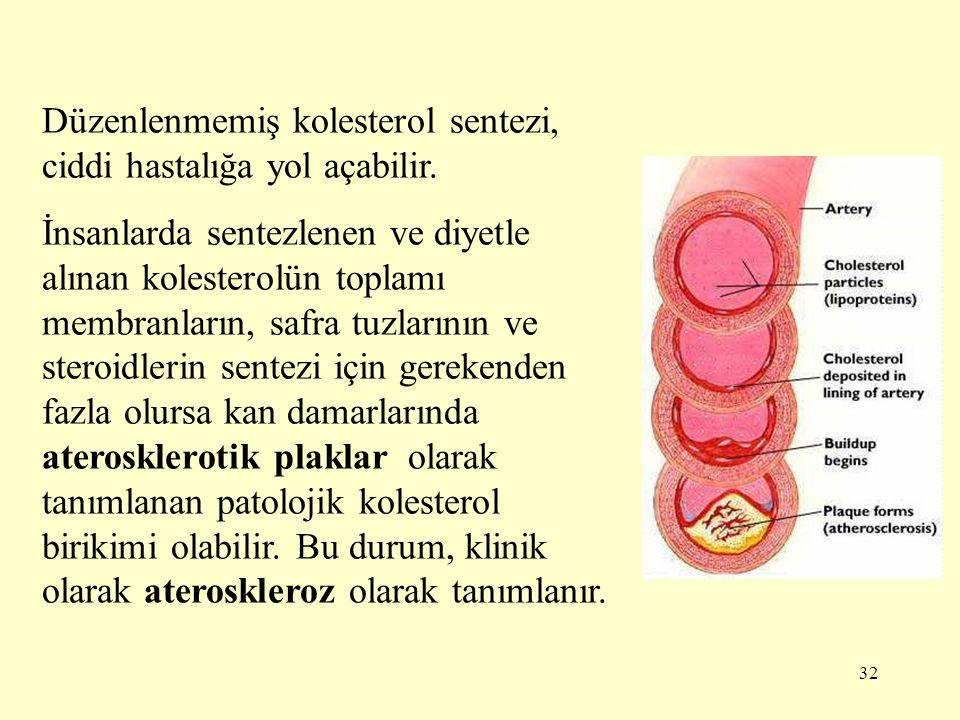 Düzenlenmemiş kolesterol sentezi, ciddi hastalığa yol açabilir.