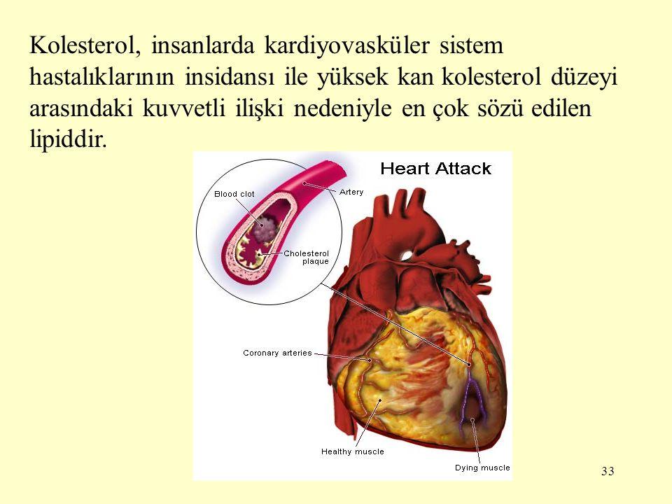 Kolesterol, insanlarda kardiyovasküler sistem hastalıklarının insidansı ile yüksek kan kolesterol düzeyi arasındaki kuvvetli ilişki nedeniyle en çok sözü edilen lipiddir.