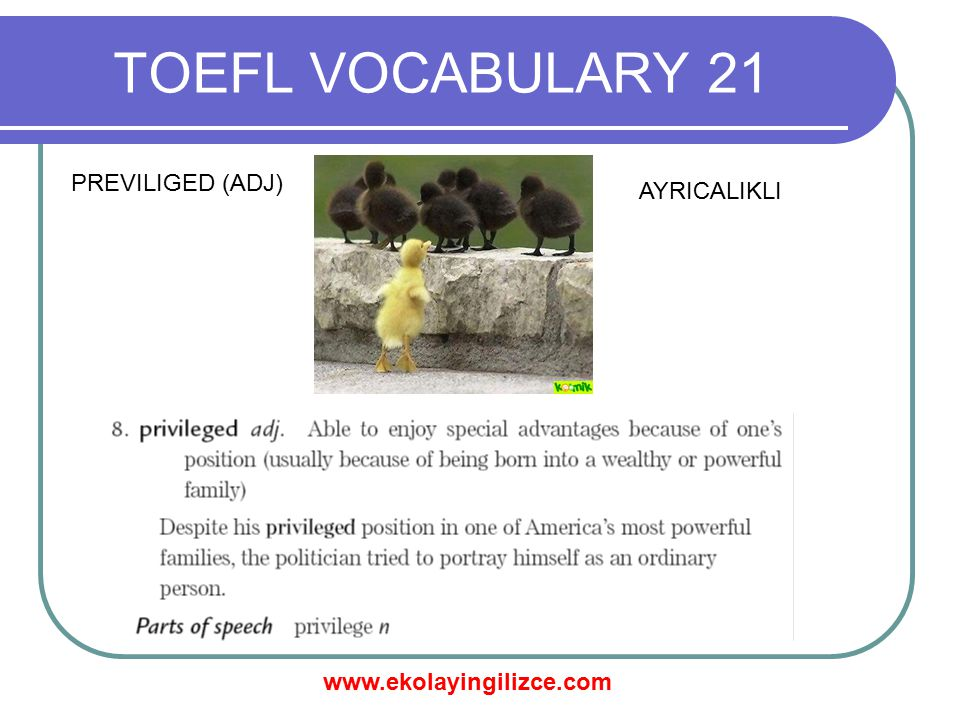 TOEFL VOCABULARY 21 PREVILIGED (ADJ) AYRICALIKLI