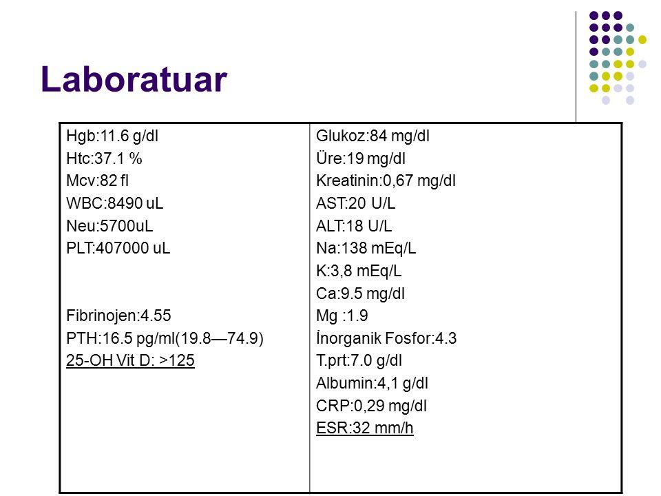 Laboratuar Hgb:11.6 g/dl Htc:37.1 % Mcv:82 fl WBC:8490 uL Neu:5700uL