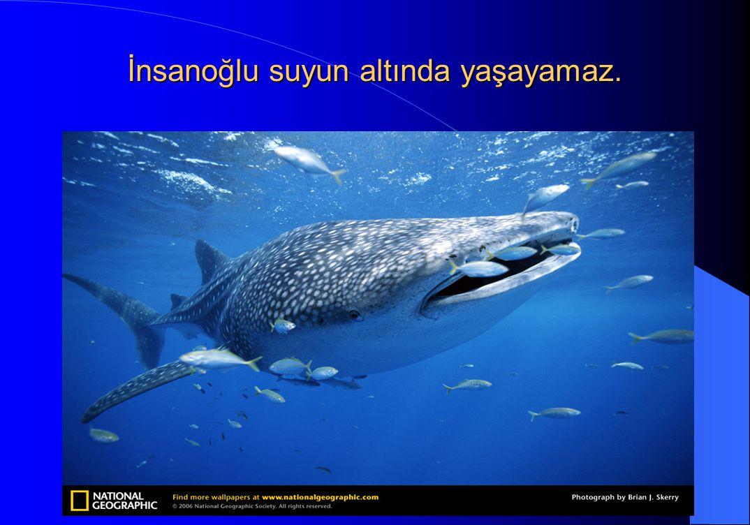 İnsanoğlu suyun altında yaşayamaz.