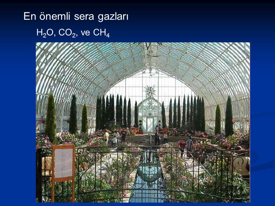 En önemli sera gazları H2O, CO2, ve CH4