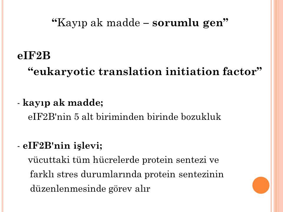 Kayıp ak madde – sorumlu gen eIF2B