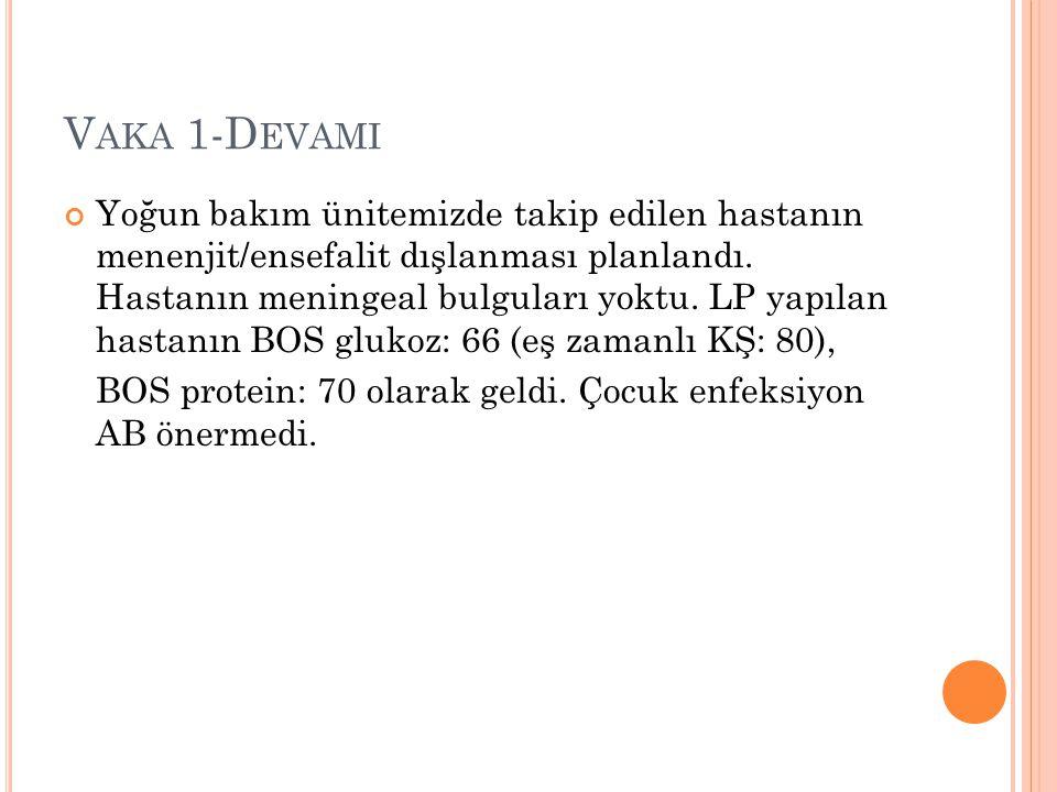 Vaka 1-Devami