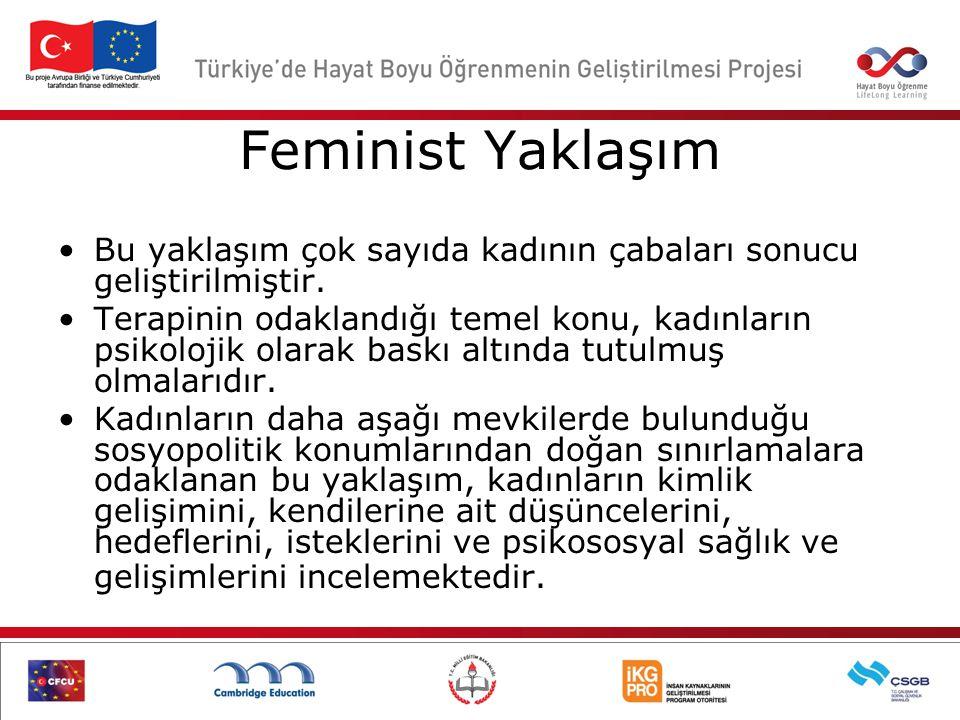 Feminist Yaklaşım Bu yaklaşım çok sayıda kadının çabaları sonucu geliştirilmiştir.