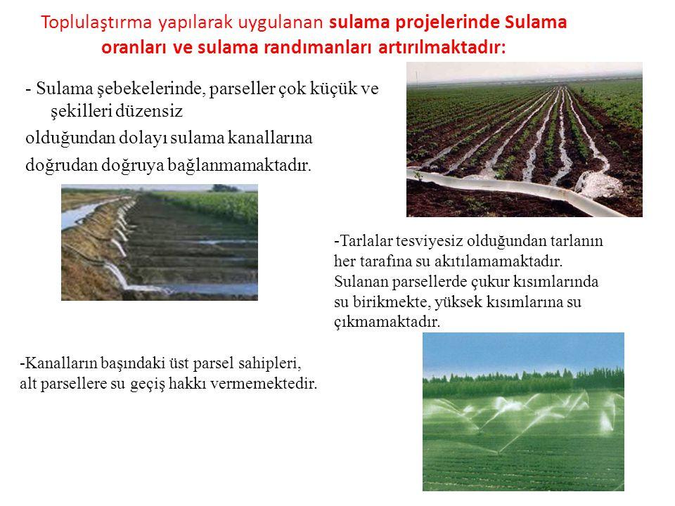 Toplulaştırma yapılarak uygulanan sulama projelerinde Sulama oranları ve sulama randımanları artırılmaktadır: