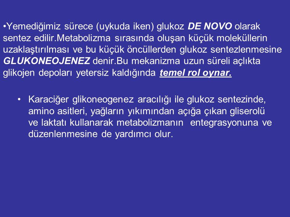 Yemediğimiz sürece (uykuda iken) glukoz DE NOVO olarak sentez edilir