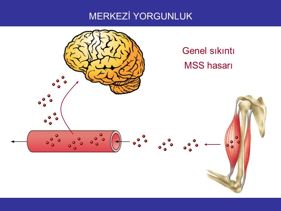 MERKEZİ YORGUNLUK Genel sıkıntı MSS hasarı